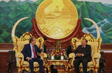 Deputy PM Truong Hoa Binh meets with Lao top leaders