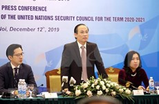 Vietnam ready for UNSC non-permanent membership