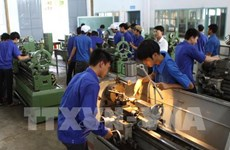 Germany looks to draw human resources from Vietnam