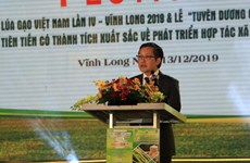 Fourth Vietnam Rice Festival underway in Vinh Long