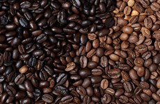 Coffee sector targets 6 billion USD in export turnover in 2020