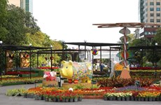 HCM City: diverse activities to welcome New Year