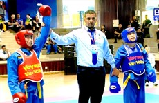 Athletes compete at World Vovinam Championship