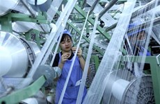 ADB affirms economic growth potential of Vietnam