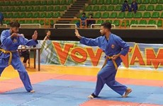 Vietnam secures berth at Vovinam world championships