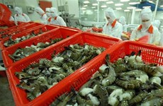 Vietnam to promote shrimp exports to EU next year