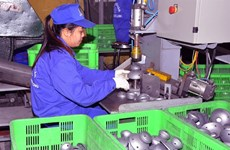Hanoi needs more policies to develop key industrial products
