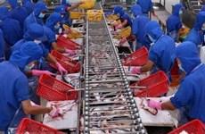 Vietnam's tra fish exports to reach 2.3 billion USD in 2019