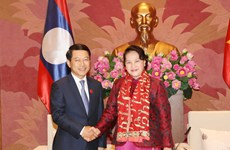 National Assembly Chairwoman receives Lao Foreign Minister