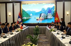 Vietnam, Laos hold sixth ministerial consultation