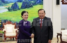 Vietnam-Laos special solidarity, comprehensive cooperation hailed