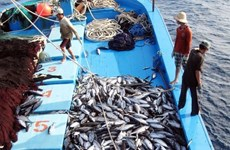 EC recognises Vietnam's improvements in combating IUU fishing