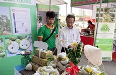 Tay Ninh promotes safe agricultural products, foodstuff in HCM City