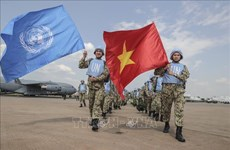 UN expects Vietnam to be active non-permanent member of Security Council