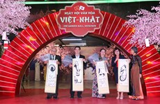 Vietnam-Japan cultural exchange festival opens in HCM City