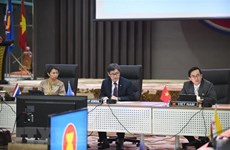 Vietnam ready for ASEAN Chairmanship Year 2020: ambassador