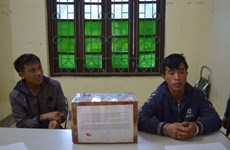 Dien Bien police arrest two drug smugglers