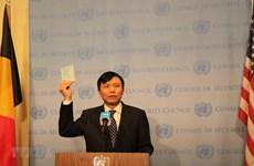 Vietnam begins presidency of UN Security Council