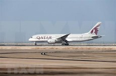 Qatar Airways plans to increase flights on Doha-Da Nang route