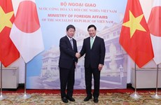 Vietnam, Japan agree to further enhance political trust