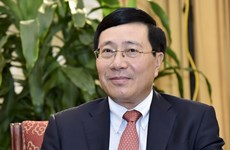 "UNSC presidency – ""golden chance"" for Vietnam: Deputy PM"