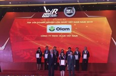 Vietnam's top 500 largest enterprises in 2019 announced