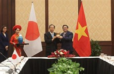 Vietnamese, Japanese officials agree to push parliamentarian ties