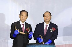 Vietnam, Japan hold cultural exchange night