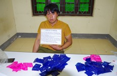Trafficker of 10,000 drug pills arrested in Dien Bien