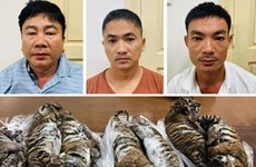 Man receives six-year jail term for transnational wildlife trading