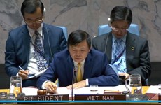 Vietnam presides over UNSC session on Yemen