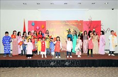 Vietnamese embassies celebrate Lunar New Year festival