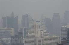 Nearly 450 schools in Thai capital city shut due to air pollution