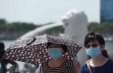 Singaporean firms suspend operations in China due to coronavirus