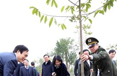 Vice President launches New Year tree-planting festival in Phu Tho