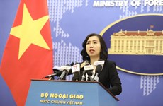 Vietnam welcomes all efforts to re-start Middle East peace process