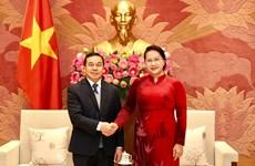 Vietnam, Laos step up legislative cooperation in 2020: Top legislator