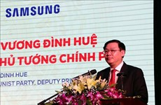 Vietnam keen to develop supporting industries: Deputy PM