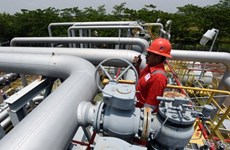 Indonesia starts work on 255km industrial gas pipeline