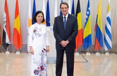 Vietnam treasures multifaceted ties with Cyprus: Ambassador