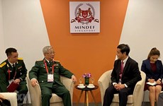 Vietnam consults Singapore about ASEAN defence activities