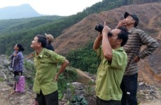 WWF-Vietnam, GreenViet work to protect endangered primates