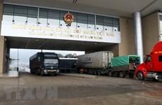 Over 6,500 tonnes of farm produce exported via Lao Cai border gate