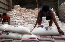 Philippines to remain largest rice importer in 2020