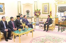 Public security minister pays courtesy call to Sultan of Brunei