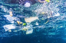 Malaysia is top plastic ocean polluter in Asia: WWF