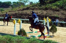 Olympic horse riding club opens in Lam Dong
