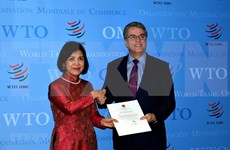Vietnam pledges continued close coordination with WTO