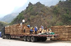 COVID-19: First batch of exports cleared at Thanh Thuy int'l border gate
