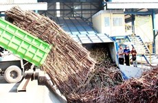 Indonesia to import 200,000 tonnes of sugar